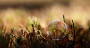 3d-Bubble-in-Grass-Pic