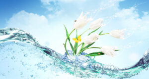 3d-Flower-in-Water-HD-Image