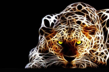 3d-Leopard-HD-Wallpaper