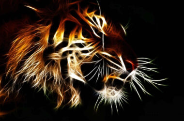 3d-Tiger-HD-Background