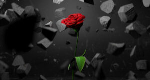 Rose-Stones-Fragments-HD-Pic