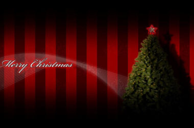 Merry-Christmas-Tree-Decorations-HD-Pic