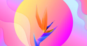 Colorful-3d-Flower-HD-Wallpaper