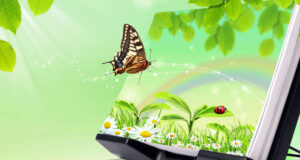3d-Nature-and-Butterfly-HD-Pic