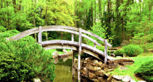 Bridge-in-Garden-HD-Image