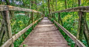 HD-Wooden-Bridge-Image