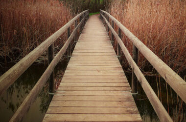 Pic-of-Wooden-Bridge