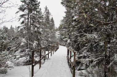 Snow-on-Wooden-Bridge-Pic