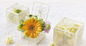 Yellow-Flower-in-Gift-Box-HD-Pic