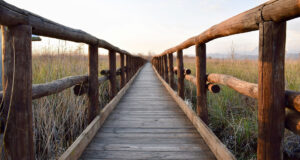 Image-of-Wooden-Bridge