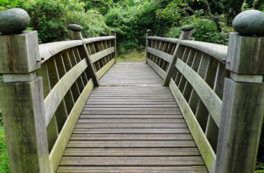 Wooden-Bridge-in-Forest-HD-Image