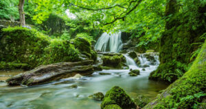 Waterfall-in-Forest-HD-Pic